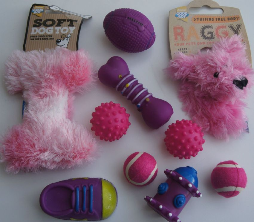 10 X ASSORTED SMALL DOG OR PUPPY TOY DOG SET